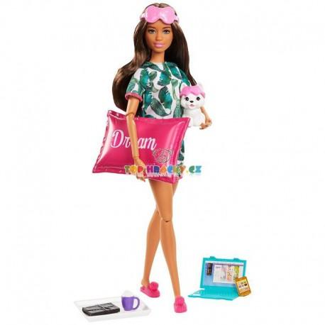 Barbie Wellness panenka hnědovláska